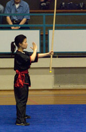 Xia Quan Tai Chi Kung Fu Nederland Rotterdam Traditional South style Kung Fu stick
