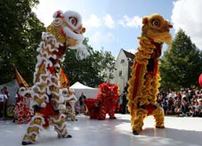 Xia Quan Tai Chi Kung Fu Nederland Rotterdam China Cultural Festival stand up lions