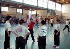 Kung Fu team in France